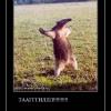 thumbs turciya 2011 1308296175218 demotivatorz ru  Демотиваторы, приколы, смешные картинки, цитаты про отдых, туризм, путешествия. Огромная подборка!