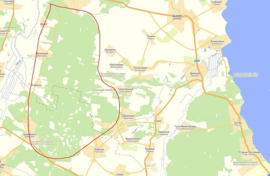 gribnyie mesta vozle kieva 1024x667 Грибные места возле Киева   где киевлянам собирать грибы