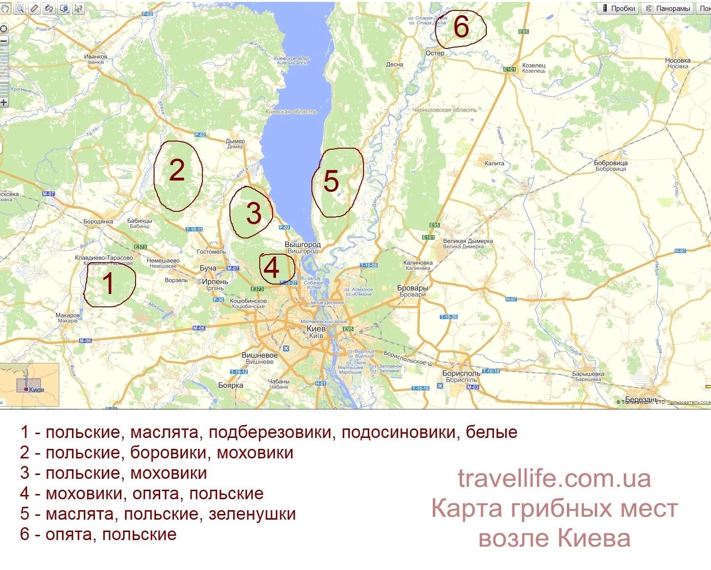 karta gribnyih mest kiev 2 Грибные места возле Киева   где киевлянам собирать грибы