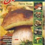 vse o gribah 150x150 Что нужно знать о грибах – полезные ссылки + определители грибов