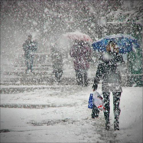 """Результат пошуку зображень за запитом """"шторм сніг негода"""""""